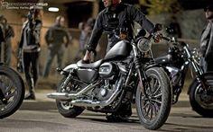 Harley Davidson Iron 883 Wallpapers   HD Wallpapers Base