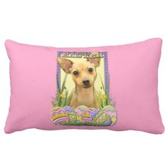 =>>Cheap          	Easter Egg Cookies - Chihuahua - Daisy Pillow           	Easter Egg Cookies - Chihuahua - Daisy Pillow in each seller & make purchase online for cheap. Choose the best price and best promotion as you thing Secure Checkout you can trust Buy bestReview          	Easter Egg Coo...Cleck Hot Deals >>> http://www.zazzle.com/easter_egg_cookies_chihuahua_daisy_pillow-189382034047917514?rf=238627982471231924&zbar=1&tc=terrest