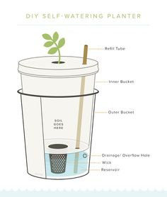 How to construct a self-watering planter