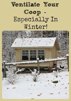 Describes why it's important to keep chicken coops well ventilated (even in winter) and how much ventilation is generally necessary - via Better Hens and Gardens(Chicken Backyard Winter) Portable Chicken Coop, Backyard Chicken Coops, Chicken Coop Plans, Building A Chicken Coop, Diy Chicken Coop, Chicken Tractors, Chicken Coup, Chicken Feeders, Backyard Poultry