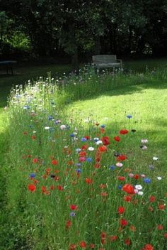 Cottage Garden Ideas to Create Perfect Spot A cottage garden's greatest appeal is that it seems to lack any conscious design. But even a cottage garden needs to be controlled.