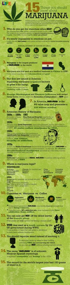 How to Roll a Blunt - 15 Things To Know About Weed