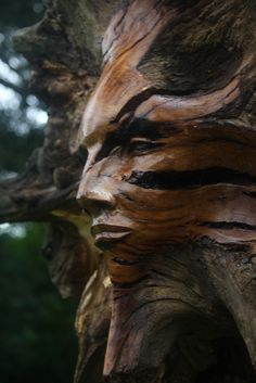 Sculpture- A Tree Spirit by Joel Bybee Fantasy Wesen, Fantasy Art, Illusion Kunst, Art Sculpture, Tree Carving, Montage Photo, Green Man, Pics Art, Tree Art