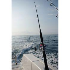 Découvrir accessoires de cannes (fourreau, détecteur...) pour la pêche