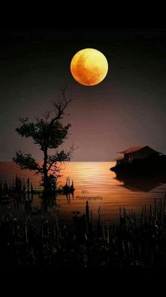 Beautiful Nature Pictures, Beautiful Nature Scenes, Beautiful Moon, Sunset Wallpaper, Scenery Wallpaper, Beautiful Landscape Wallpaper, Beautiful Landscapes, Moon Photography, Landscape Photography