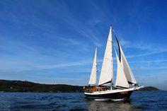 En velero por las islas Cíes, Galicia Sailing Ships, My Dream, Boat, Travel, Dreams, Yachts, Hotels, Islands, Beach