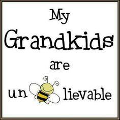 Grandkids  my grandkids are un bee lievable
