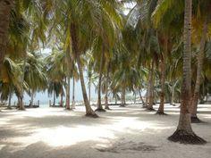 Isla de Tierra Bomba Cartagena-Bolívar Culture Travel, Trips, Passion, Vacation, Beautiful, Cartagena Colombia, Beaches, Earth, Islands