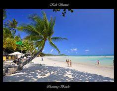 Chaweng Beach, Koh Samui, Thailand is home of Island Info Samui the best agency for Full Moon Party Transport, Day tours to Koh Phangan, Koh Tao, Koh Nang Yuan and Ang Thong National Marine Park. Island Info Samui is located inside ARKbar Beach Resort. http://islandinfokohsamui.com/