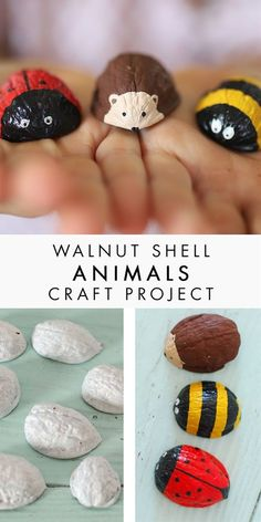 Walnut Shell Animals Kids Crafts, Crafts To Do, Fall Crafts, Christmas Crafts, Craft Projects, Arts And Crafts, Craft Kids, Shell Crafts Kids, Wood Crafts