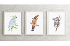 Koala art - cockatoo art - platypus painting - 3 prints - koala watercolor - Australia Art - Australian animals illustration - Wildlife