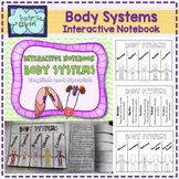 Human body Systems Interactive Notebook by Teacher's Clipart Endocrine System, Circulatory System, Lymphatic System, Respiratory System, Secondary School Science, 1st Grade Science, Human Body Activities, Human Body Systems, Muscular System