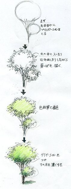 手描きパースの描き方ブログ、パース講座(手書きパース):樹木の描き方(手描きパースの描き方)