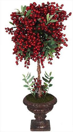 Topiaries on Pinterest | 25 Pins