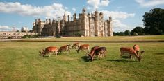 Burghley House - famous house built by William Cecil, advisor to Queen Elizabeth I.