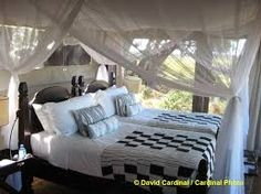 Beds that are so comfy that getting out in the early morning for a game drive can be hard work! Okavango Delta, Beautiful Islands, Early Morning, Outdoor Furniture, Outdoor Decor, Hard Work, Beds, Comfy, Game
