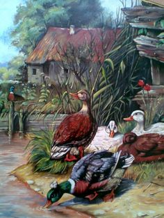 painted myself / hakan tuna Farm Paintings, Wildlife Paintings, Wildlife Art, Animal Paintings, Animal Sketches, Animal Drawings, Arte Do Galo, Canvas Painting Projects, Acrilic Paintings