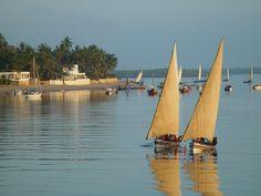 Île de Lamu, Kenya#Tout au nord de la côte kenyane, aux portes de la Somalie, l'île de Lamu flotte au cœur d'un petit archipel partagé entre plages de sable chaud, mangroves, palmiers et broussailles. Pour accéder à l'île de Lamu, il n'y a que le bateau ou l'avion. Pour y circuler, pas de voitures, seulement des ânes. La ville concentre l'essentiel de la culture locale et des traditions islamiques.#http://urlz.fr/3hqw#africanbusinessmagazine.com