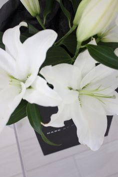 Homevialaura | white lilies