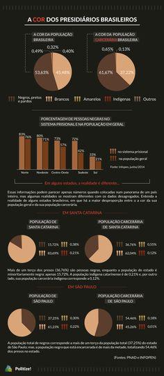 Perfil da população carcerária brasileira - cor
