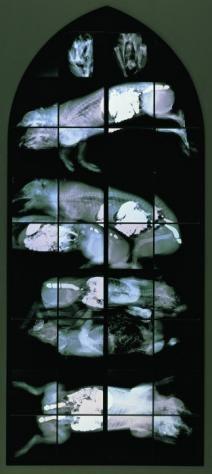 william delvoye' monochrome theme
