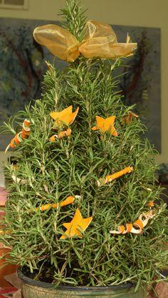 Best Preserved Tangerine Peel Recipe On Pinterest