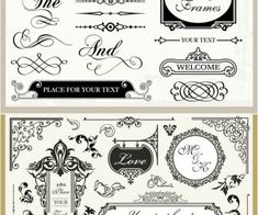 Vintage Wedding Ornaments - Vector