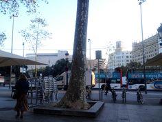 Moooolt bon dia: fresqueta i sol!!! Plaça Catalunya