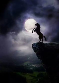 By the power of the moon. Horse art, horse painting, horse rearing up on cliff . Pretty Horses, Horse Love, Beautiful Horses, Animals Beautiful, Animals And Pets, Cute Animals, Majestic Horse, Beautiful Moon, Horse Pictures