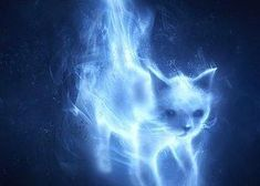 Find out which patronus would be yours in this Harry Potter quiz. Harry Potter Witch, Harry Potter Quiz, Harry Potter Universal, Nebelung, Which Hogwarts House, Hogwarts Houses, Dog Zodiac, Zodiac Signs, Sirius Black