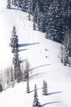 The canyons shared by http://www.myskiholiday.com Lets Go SKI Amazing discounts - up to 80% off Compare prices on 100's of Hotel-Flight Bookings sites at once Multicityworldtravel.com