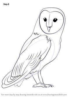barn outline Rare owl outline drawing learn how to draw a barn owl drawing - Drawing Tips Outline Drawings, Bird Drawings, Easy Drawings, Animal Drawings, Cute Owl Drawing, Drawing Drawing, Drawing Tips, Drawing Tutorials, Simple Owl Drawing