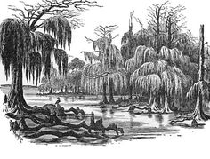 Roanoke: Roanoke was originally founded by England's Sir Walter Raleigh. The main purpose of his trip to the New World was to make Roanoke Island a military colony. In fact, England sent seven ships full of soldiers on this trip. Due to the expedtion's encountering too many problems, this first attempt at settling a colony was unsuccessful. http://library.thinkquest.org/05aug/00156/roanokeoverview.html