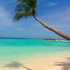 Maafushi maldives. My wish list for travel in maldives.