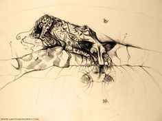 wild dog, river, puppy, butterfly, drawing, sketch, ink, pencil, wildlife, painted dog