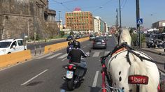 Horse and Cart Ride in the City of Naples, Italy