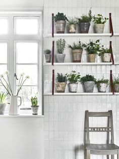 Small Home Interior herb garden ideas.Small Home Interior herb garden ideas Cheap Bedroom Decor, Cheap Home Decor, Stylish Home Decor, Luxury Home Decor, Thyme Plant, Herb Garden In Kitchen, Decoration Christmas, Herb Pots, Gardens