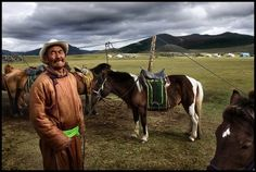 The Mongol Horse: Supreme on the Steppe By  Jonathan DeHart