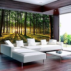 murando - Wallpaper 350x245 cm - Non-woven premium wallpaper - Wall mural - Wall decoration - Art print - Poster picture photo - HD print - Modern decorative - Sunshine forest nature landscape c-B-0027-a-b: Amazon.co.uk: DIY & Tools