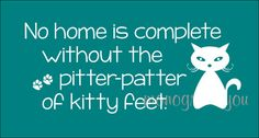 Cat Quote Wall Decal by MonogramYou on Etsy