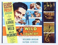 Elvis Presley - Wild in the Country - Mini Print C