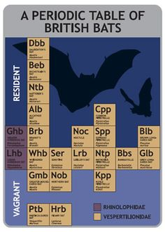 A periodic table of British bats
