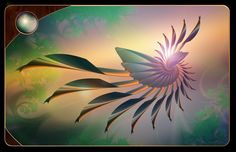 Bird of Paradise by *nmsmith on deviantART