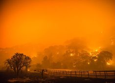 TONIGHT at 7pm I'll be sharing my latest photography work on California's wildfires and discussing the images at Sherman Library and Gardens in Corona Del Mar, CA. There will be some new+unpublished work from the Wine Country Fire Siege and recent fires in the Los Angeles Area. This is a FREE event open to the public, RSVP HERE AND SEE YA TONIGHT: http://www.slgardens.org/BookingRetrieve.aspx?ID=74365 #cafire #atlasfire #cdm #newportbeach #oc #thursday #terraflamma #event #events #speaking…