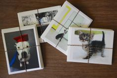 Custom made photo greeting cards  rescue dog benefits shelter dogs and cats-set of four