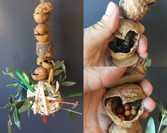 Parrot foraging toy made with wood, walnuts, wood sticks and filled with berries and raw pasta