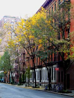 Houses and trees in Greenwich Village.