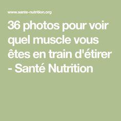 36 photos pour voir quel muscle vous êtes en train d'étirer - Santé Nutrition