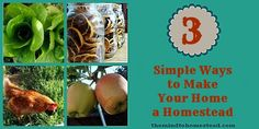 3 Simple Ways to Make Your Home a Homestead - The Mind to Homestead