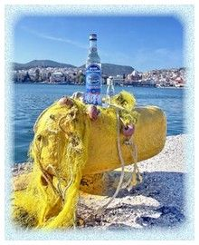 ouzo3 Accounting, Camel, Drinks, Animals, Drinking, Beverages, Animales, Animaux, Camels